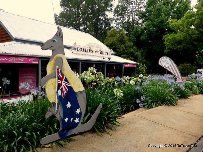 Kangaroo Valley Day 4