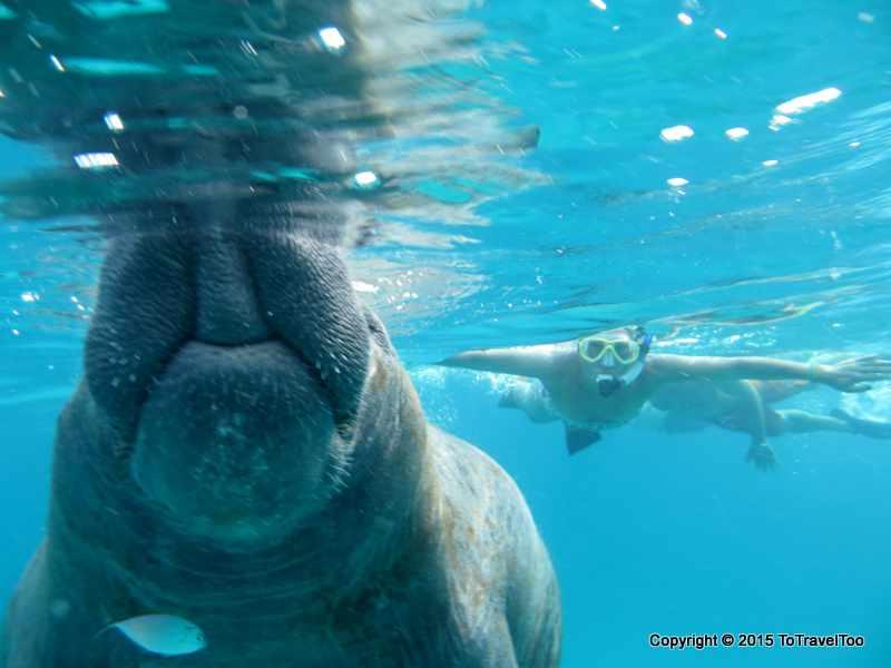 Belize Caye Caulker , Carlos Snorkel Trip