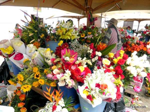 Flower Market Plaza de Flores Cuenca