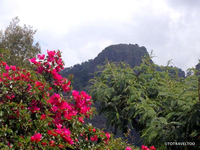 Top 5 Things To Do in Tepoztlan, Mexico