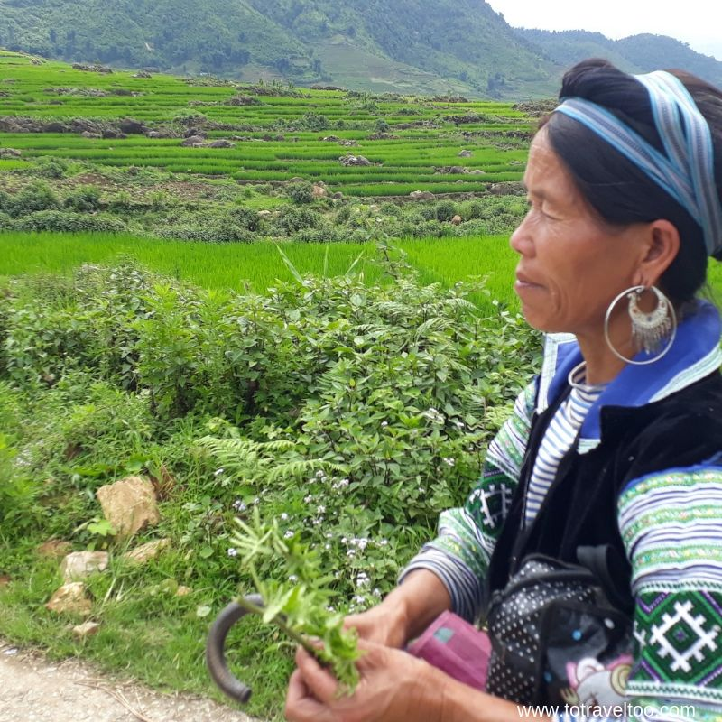Our trek through the rice terraces