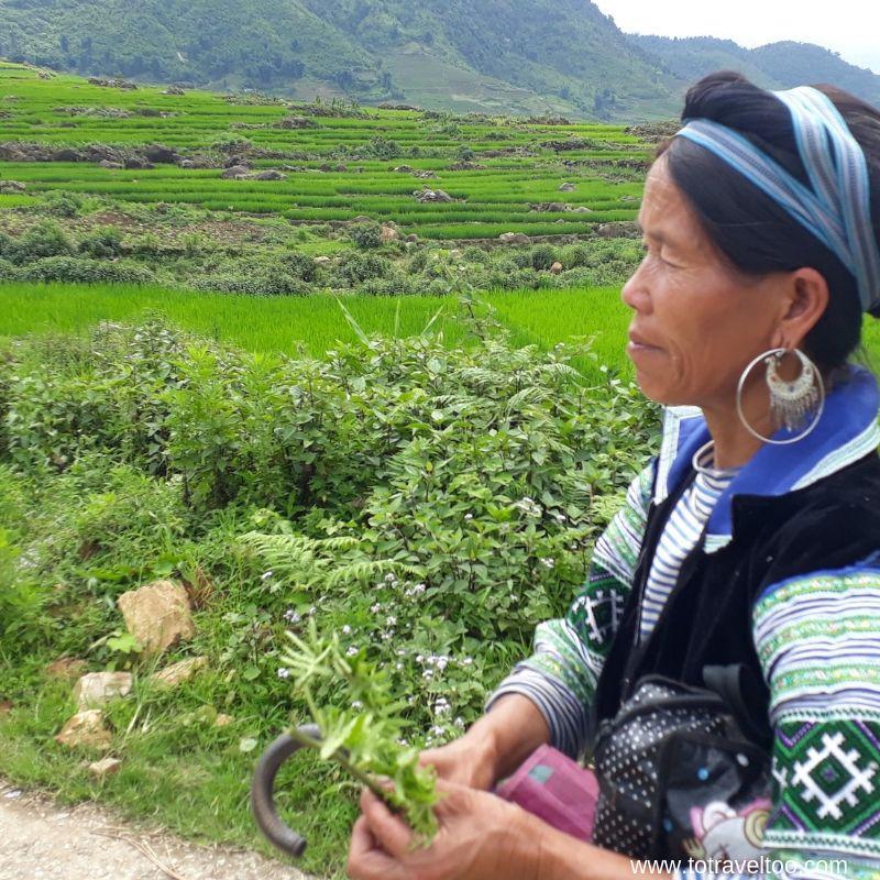 Our trek through the rice terraces