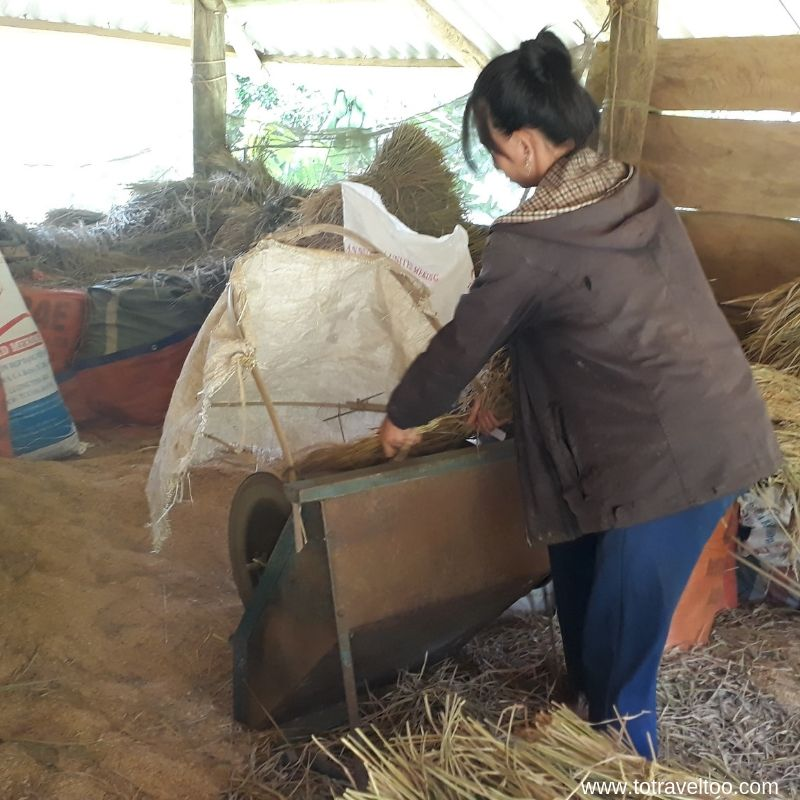 Husking the rice - Our Guide to Mai Chau Vietnam