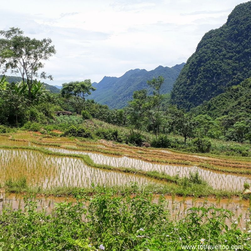 Pu Luong Nature Reserve