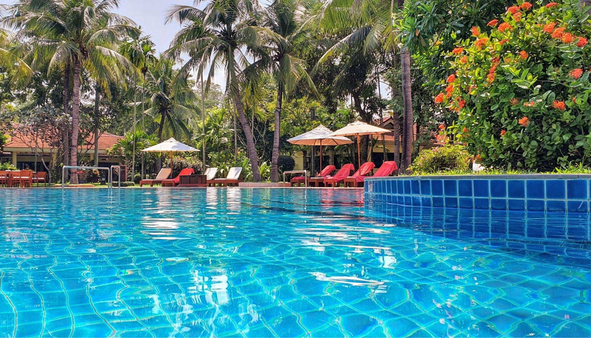 The largest free-form swimming pool in Siem Reap