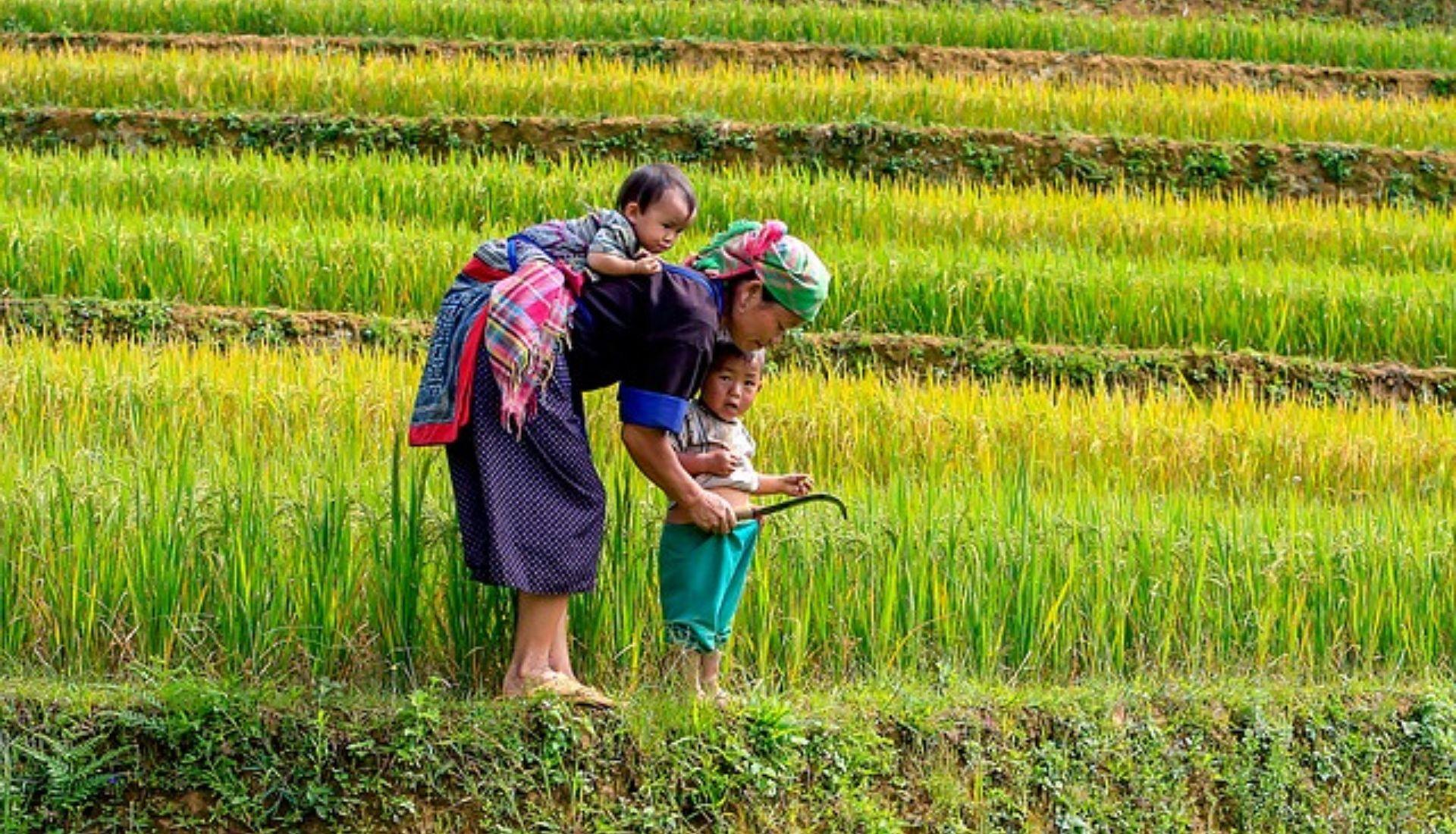 Visit the Ethnic Groups of Vietnam