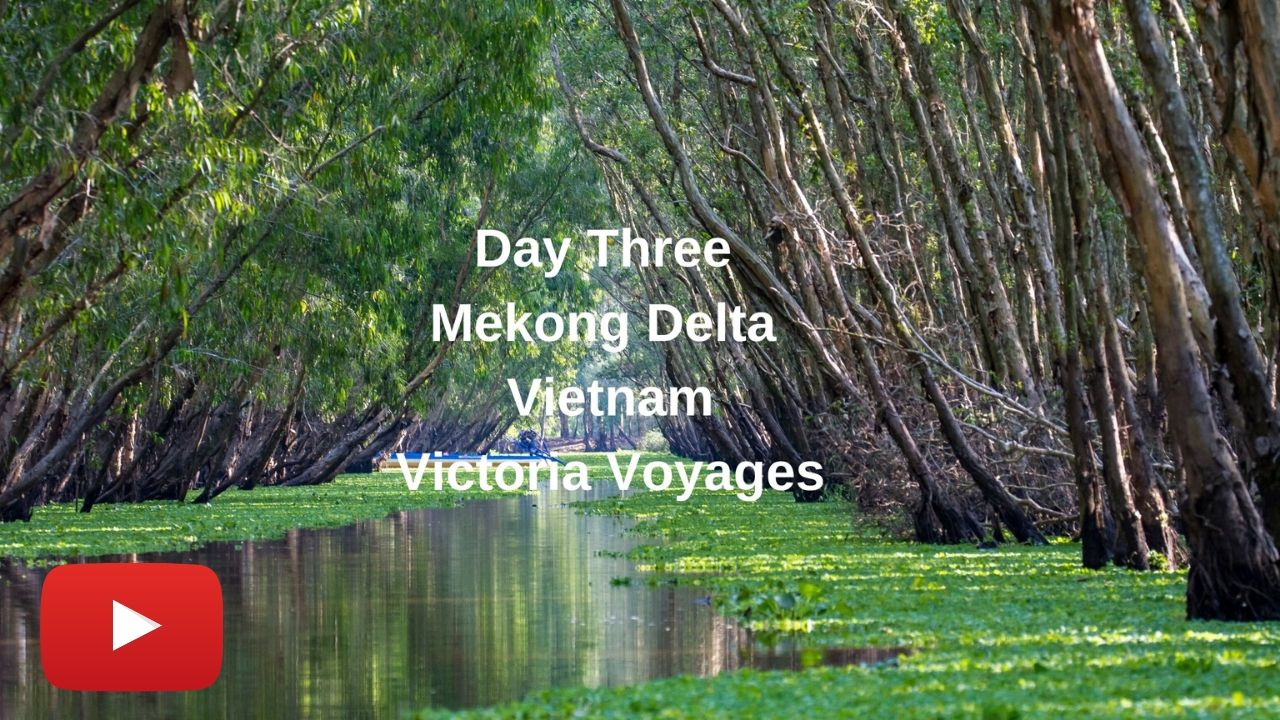 Youtube day 3 mekong delta