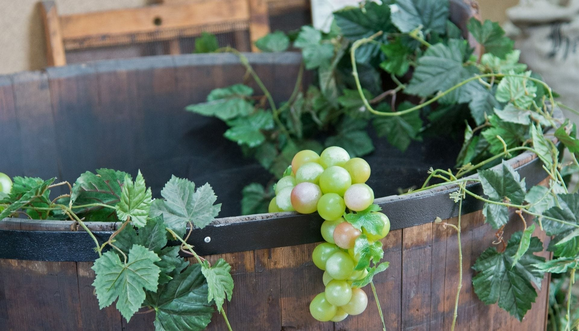 Wines Hunter Valley