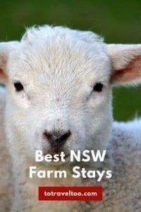 Farm Stays NSW