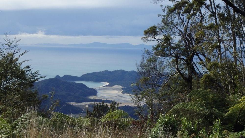 Abel Tasman View